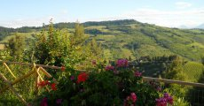 Visita la pagina di Bed and Breakfast Silent Valley a Ripatransone